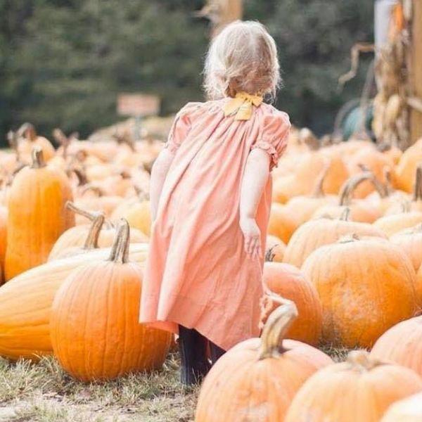 Cedar Hill Farm Pumpkin Patch