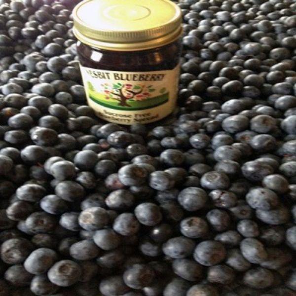 """U Pick"" Nesbit Blueberry Plantation"