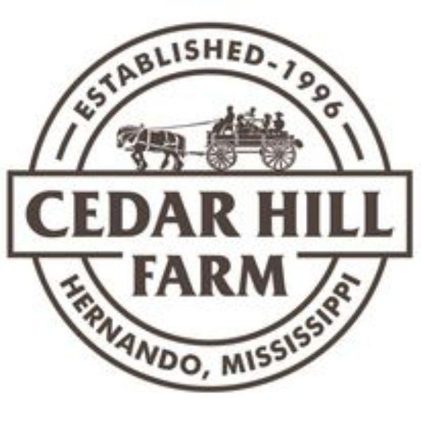 More Info for Cedar Hill Farm Pumpkin Patch